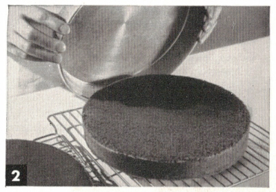 Let Cake Cool In Pan