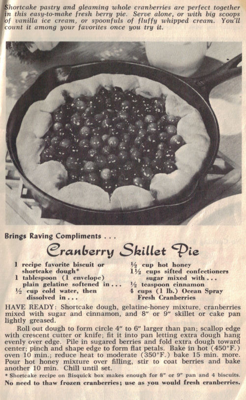 Cranberry Skillet Pie Recipe Page