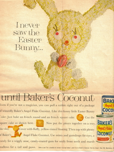 Easter Bunny Cake Instructions